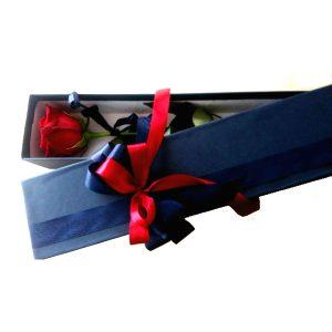 Роза во плава кутија