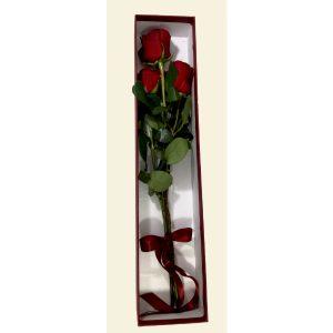 Три рози во кутија