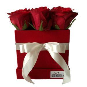 Рози во плишена коцкаста црвена кутија