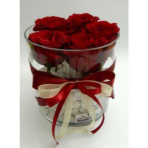Роза во стаклена цилиндична вазна