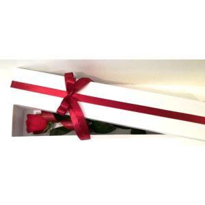 Роза во бела кутија 4