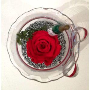 Трајна роза 4